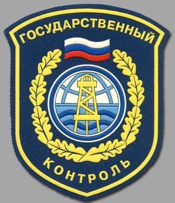 1.1 Лого государственный контроль
