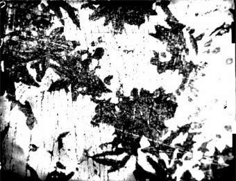 1.7 Структура ледебурит, характерный для белых чугунов