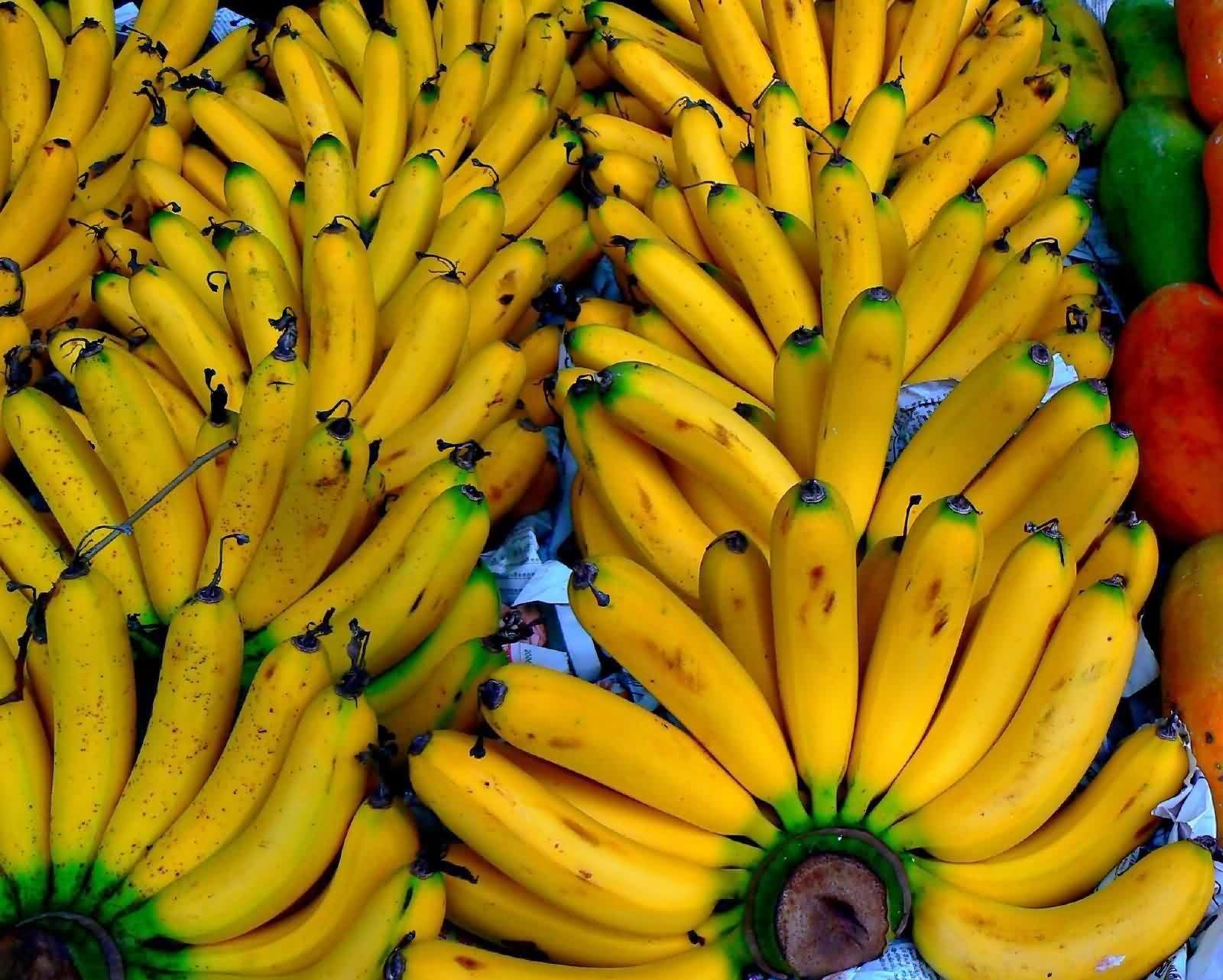 продаха бананов