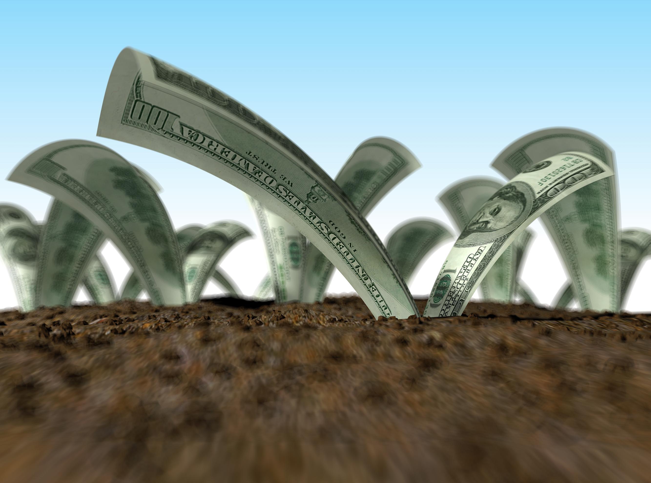 инвестиции: При правильном подходе прибыль будет расти