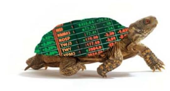 Торговая стратегия Черепаха